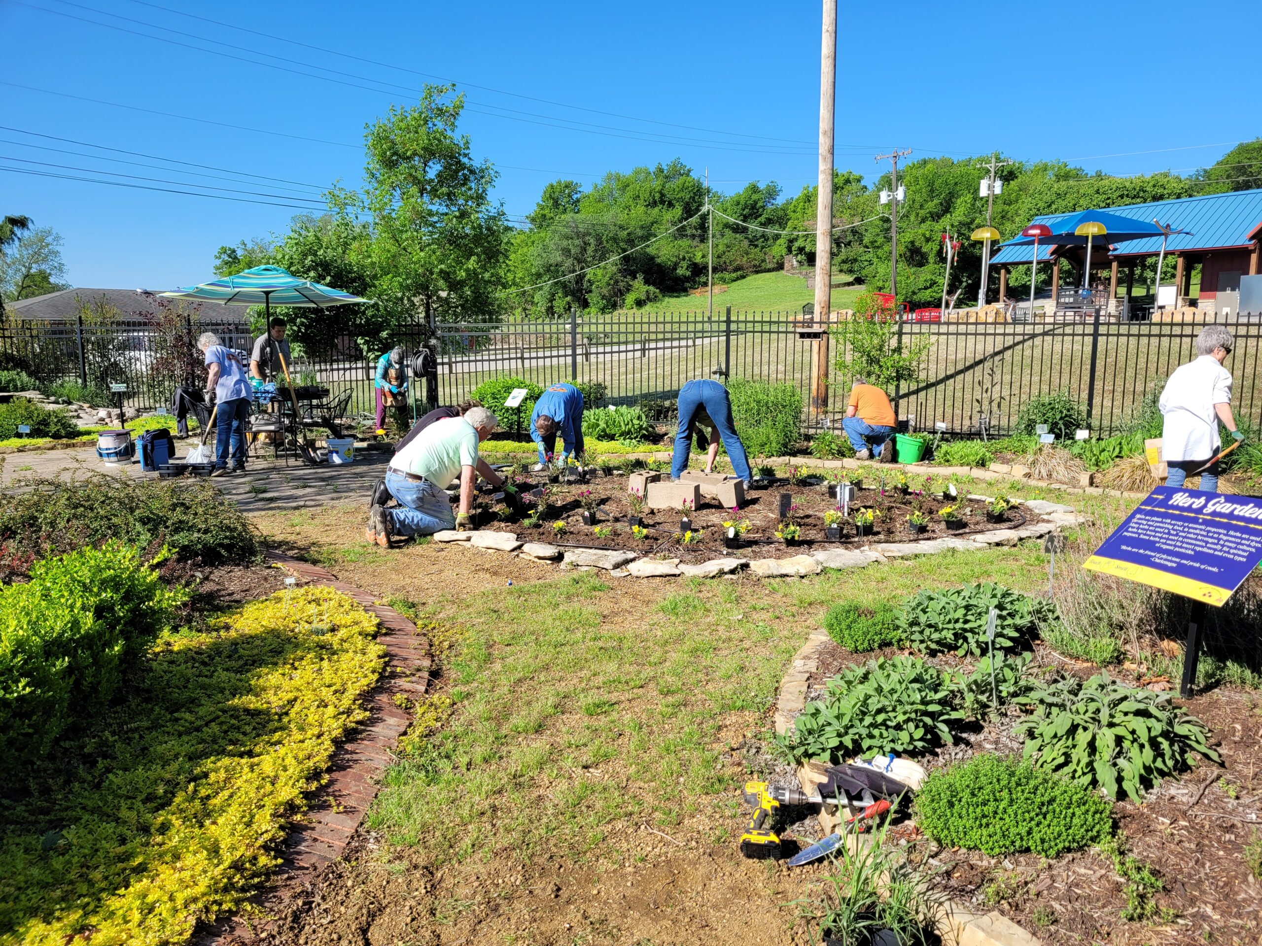 Working in the Teaching Gardens